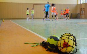 BPJEPS Sports Collectifs,Mention Handball